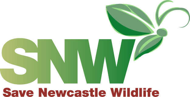 Save Newcastle Wildlife